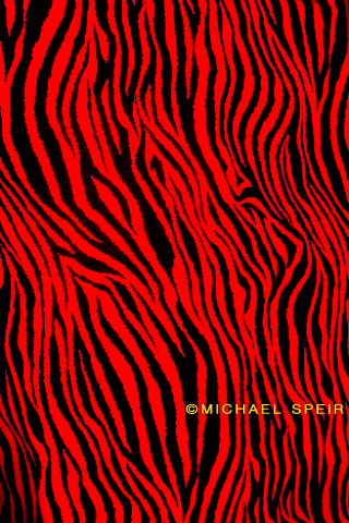 zebra wallpaper. 13-Zebra-Wallpaper-Red