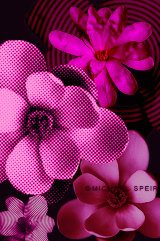 Free Wallpapers Michael Speir Style
